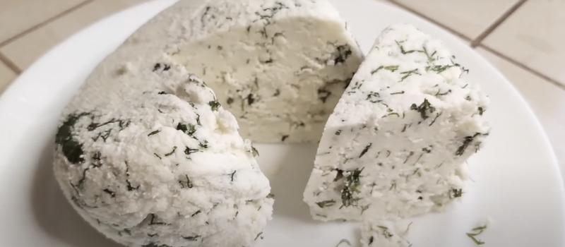 Вегетарианские рецепты: Домашний сыр